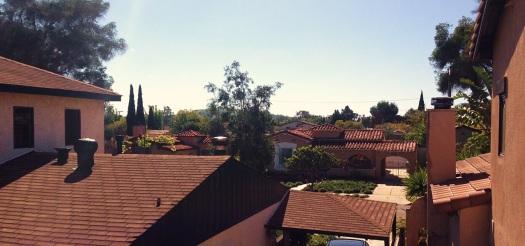 Reynier-Rooftops